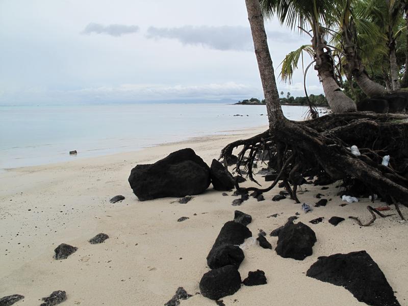 Самоа отзыв