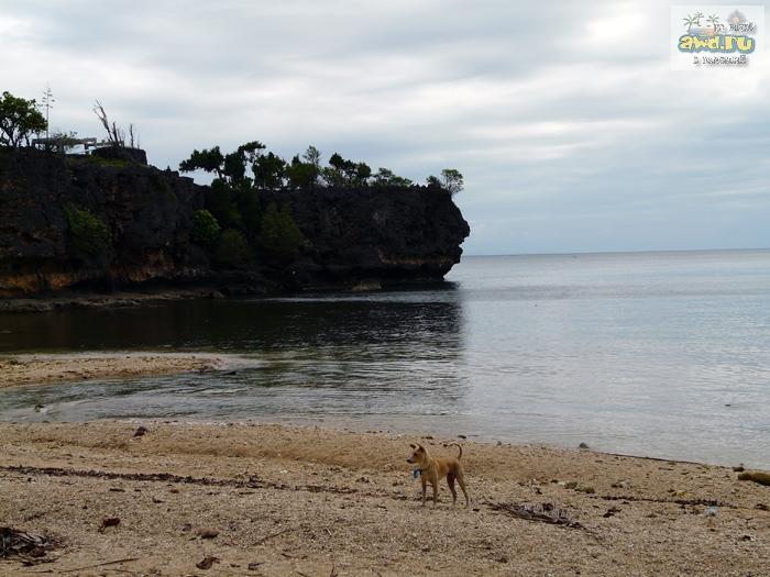 Остров Сикихор и хилеры