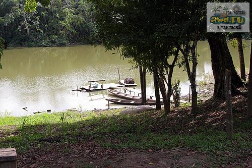 Школа выживания в джунглях Амазонки Икитос