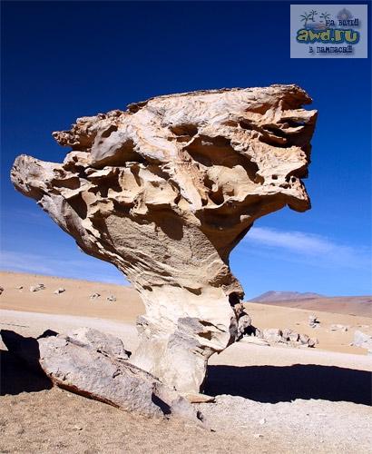 салар Уюни в Боливии