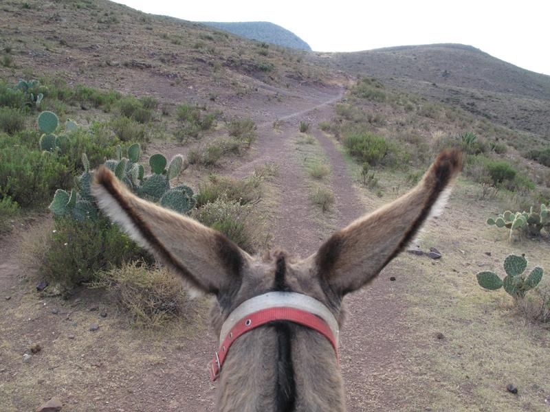 пустыня вирикута