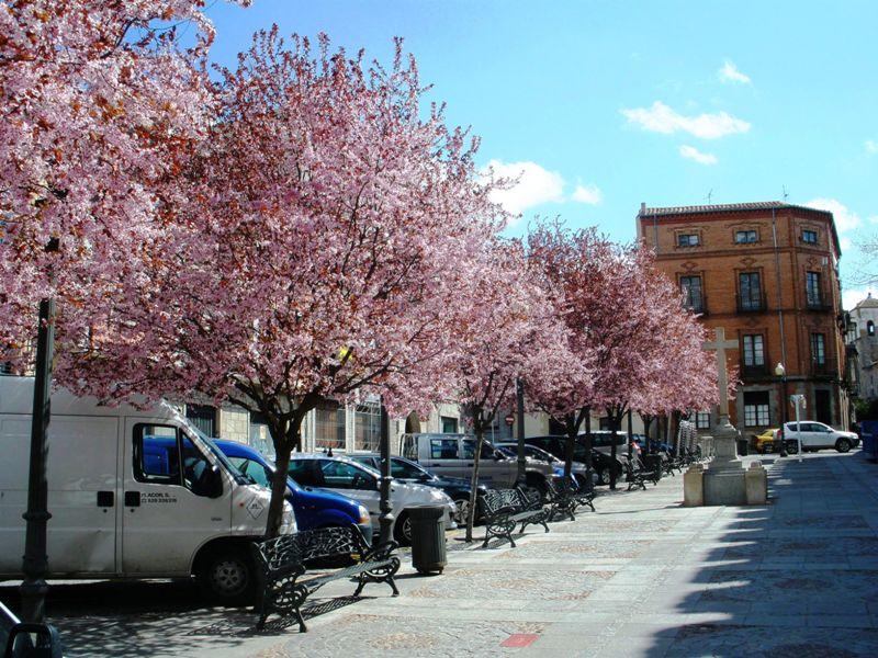 Испания: 5 городов за 5 дней (центр и Андалусия)